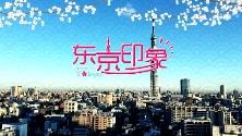 東京印象(番組)